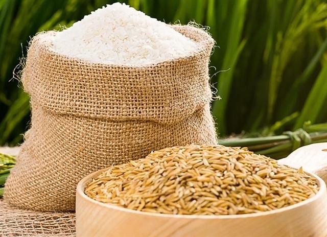 Xuất khẩu gạo giảm mạnh, TAR báo lãi chỉ bằng 1/10 cùng kỳ