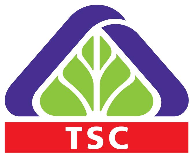 TSC: Chi phí tăng cao, quý 4 lỗ ròng hơn 4 tỷ đồng