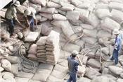 Tiêu thụ xi măng tăng mạnh, xuất khẩu có thể 'về đich' sớm