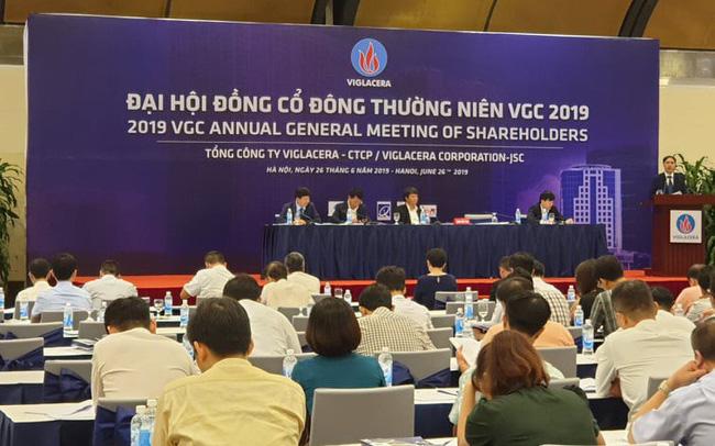 ĐHCĐ Viglacera: Ra mắt tân Chủ tịch HĐQT, lợi nhuận trước thuế có thể vượt mốc 1.000 tỷ đồng trong năm 2019