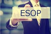 Hơn 800 cán bộ nhân viên VPBank được mua cổ phiếu ESOP