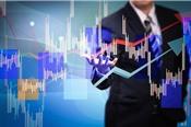 Khối ngoại mua ròng 232 tỷ đồng trong phiên VN-Index giảm gần 19 điểm