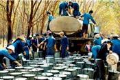 Cao su Hòa Bình muốn hợp tác Becamex IDC làm khu công nghiệp 2.000 ha