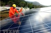 Đầu tư hơn 1.150 tỷ đồng xây dựng nhà máy điện Mặt Trời ở Long An