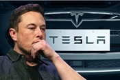 Elon Musk mua 20 triệu USD mua cổ phiếu, giúp Tesla nộp phạt