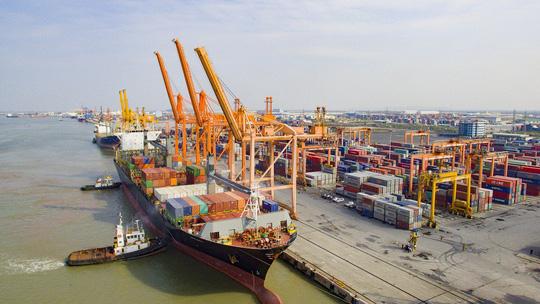Vận tải biển Việt Nam lo