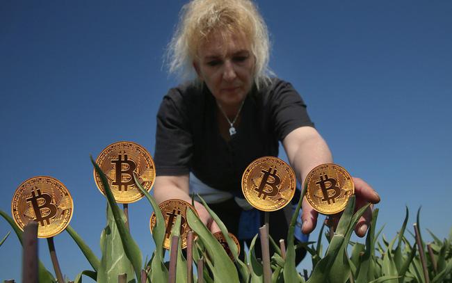 Bitcoin là hội chứng hoa tulip nở rộ rồi tàn lụi nhanh chóng hay giống như internet đời đầu cần thời gian để khai thác tiềm năng?