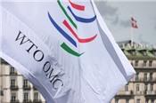 Mỹ đệ đơn kiện lên WTO vì bị trả đũa thuế kim loại