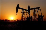 Tồn kho dầu tại Mỹ tăng, giá dầu loanh quanh đỉnh 6 tháng