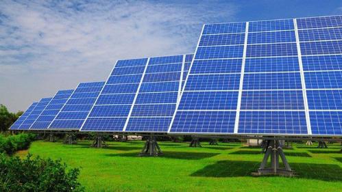 Doanh nghiệp cá tầm đầu tư 1.200 tỷ đồng vào điện mặt trời