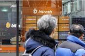 Bitcoin ngày càng giống bong bóng dotcom nhưng diễn biến nhanh gấp 15 lần