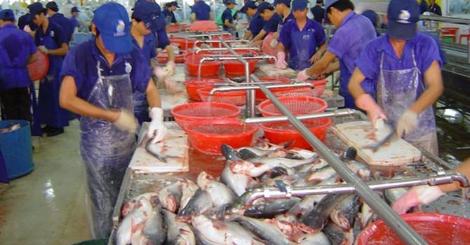 Chế biến phụ phẩm thủy sản: Khoảng trống tỷ đô