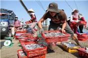 """8 Bộ, ngành tìm giải pháp giúp hải sản Việt Nam thoát """"thẻ vàng"""" của EU"""
