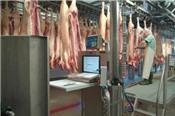 Công bố tiêu chuẩn quốc gia về thịt lợn mát