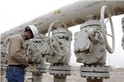 Lo ngại nguồn cung từ Mỹ giảm, dầu tăng giá