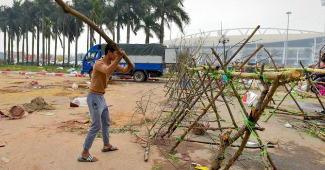 Tiểu thương Hà Nội cũng đập nát hoa đào để tránh bị ép giá