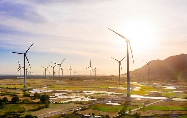 Dừng cơ chế giá FIT, chuyển sang đấu thầu các dự án điện gió