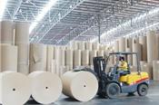 Nhà máy Giao Long chậm tiến độ, DHC vẫn đặt mục tiêu lãi 150 tỷ năm 2019