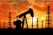 Các quỹ đầu cơ giảm đặt cược vào  đà tăng của giá dầu