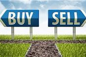 NLG, TCB, VHC, MSN, OGC, DXG, ASM: Thông tin giao dịch cổ phiếu lớn