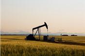 Mỹ sẽ trừng phạt mọi khách của Iran, giá dầu lên cao nhất hơn 5 tháng