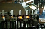 Bóng đèn Rạng Đông thanh toán cổ tức tiền tỷ lệ 25% vào 21/9