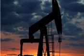 Giá dầu đi lên bất chấp dự trữ dầu của Mỹ tăng