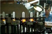 Lãi ròng Bóng đèn rạng đông giảm 4% trong nửa đầu năm