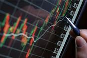 Ngày 14/12: Khối ngoại dừng mua CCQ ETF nội, quay trở lại mua ròng 33 tỷ đồng trên toàn thị trường