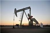 Giá dầu giảm trước thềm cuộc họp của OPEC