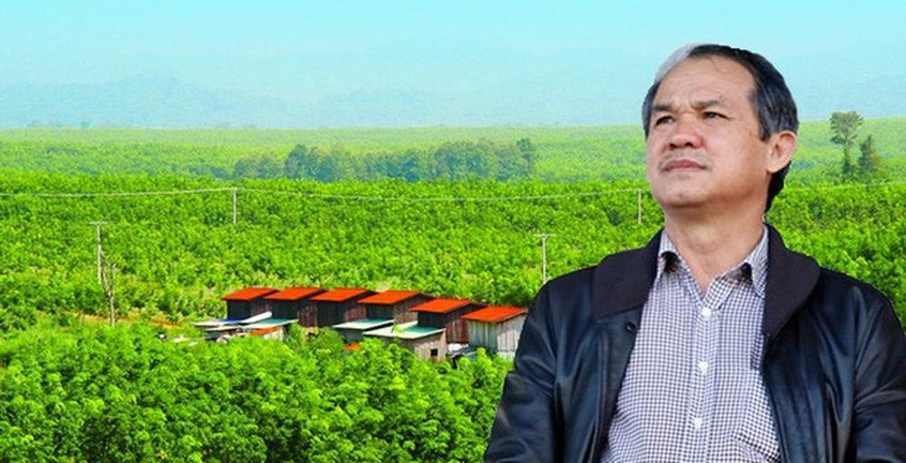 HNG chuyển nhượng công ty cao su vốn hơn ngàn tỷ