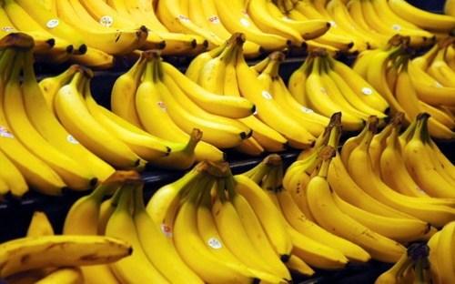 HNG dùng tiền huy động trái phiếu mở rộng diện tích trồng chuối