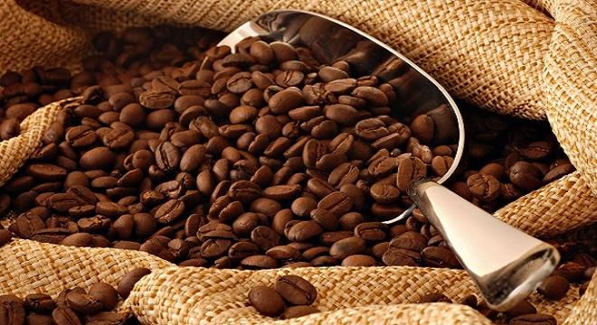 Thương Phú (CTP) kỳ vọng sẽ tăng tốc cùng giá cà phê thế giới