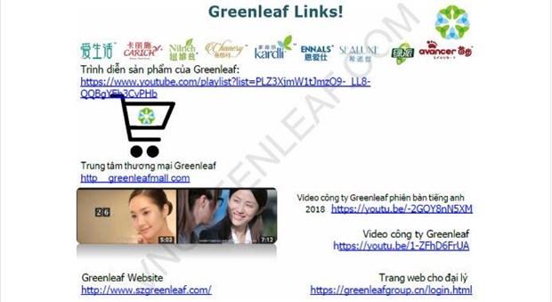Bộ Công Thương cảnh báo mạng lưới đa cấp không phép của Greenleaf
