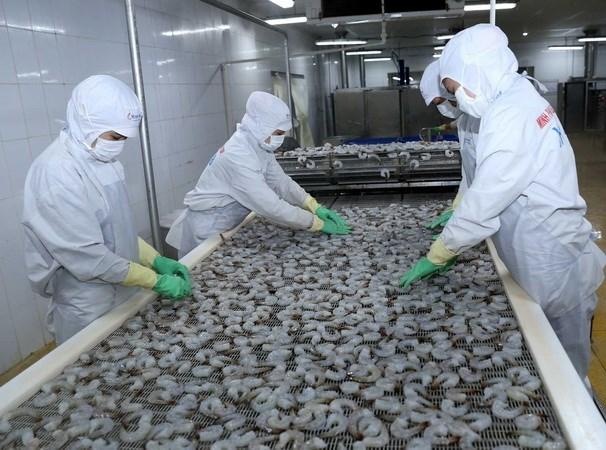 Nâng tầm sản phẩm tôm Việt Nam trên thị trường thế giới