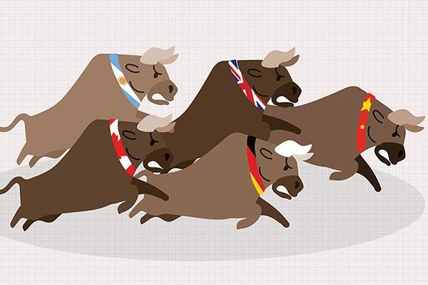 Thị trường chứng quyền 22/06/2021: CMWG2013 và CVPB2101 đang được định giá hấp dẫn
