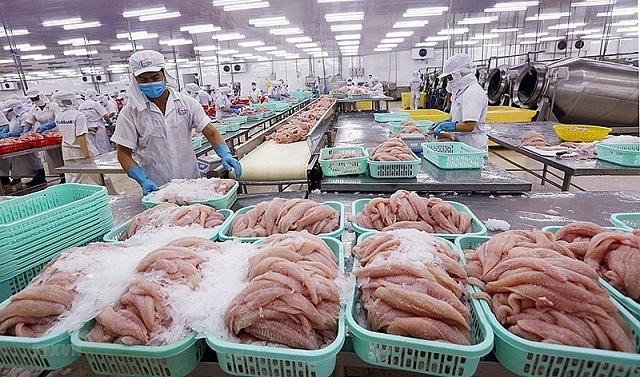 Doanh nghiệp thủy sản: Gặp bất lợi do chính sách?