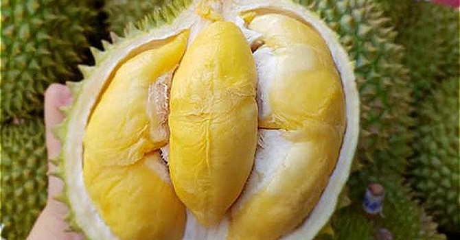 Trung Quốc siết nhập khẩu trái cây