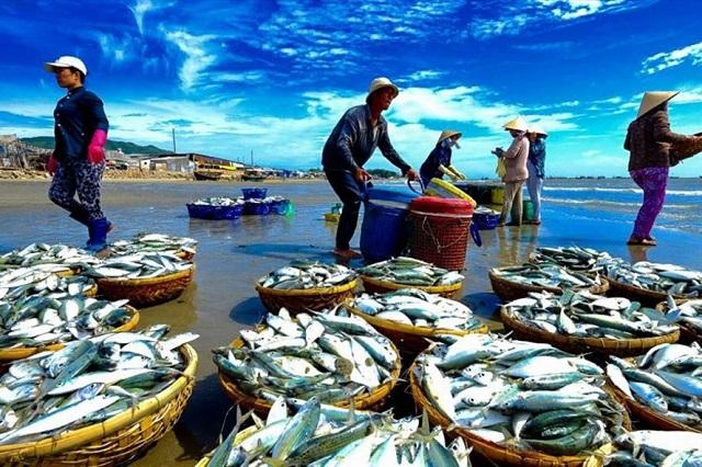 """Việt Nam có thêm thời gian kiểm tra khắc phục """"thẻ vàng"""" thủy sản"""