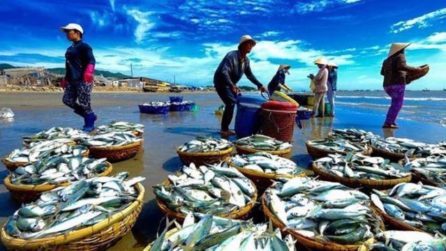 EU vượt Mỹ trở thành nơi tiêu thụ thuỷ sản số một của Việt Nam