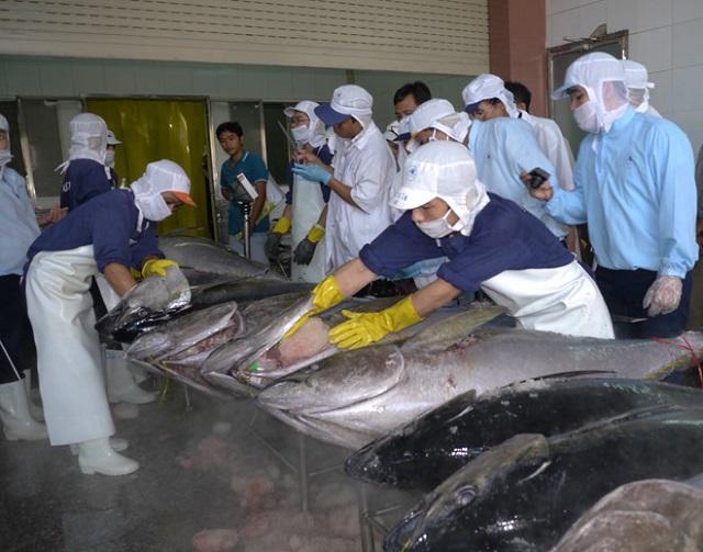 Tôm, cá ngừ hưởng lợi từ thương chiến Mỹ - Trung