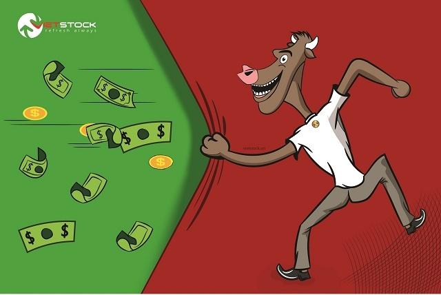 Nhịp đập Thị trường 30/09: Cổ phiếu ngân hàng tư nhân tăng nhẹ, VN-Index mở cửa tích cực