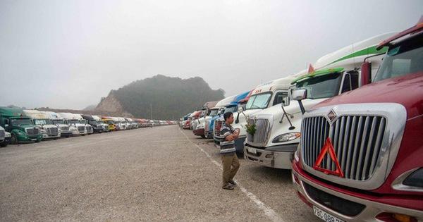 Các cửa khẩu biên giới phía Bắc đang tồn 567 container trái cây, thép, linh kiện
