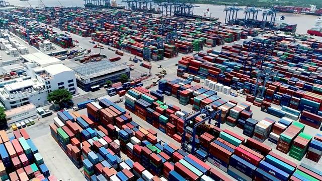 Cảng Cát Lái tồn hơn 100.000 container, hải quan TP.HCM kiến nghị gỡ khó cho doanh nghiệp