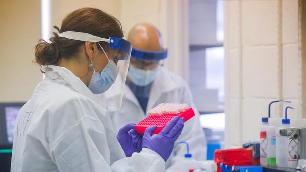 Cổ phiếu công ty thuốc xịt mũi chống Covid-19 tăng gần 500% một phiên