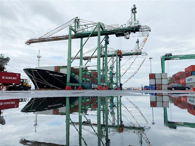 Giá dịch vụ cảng biển thấp, tiền vào túi hãng tàu nước ngoài