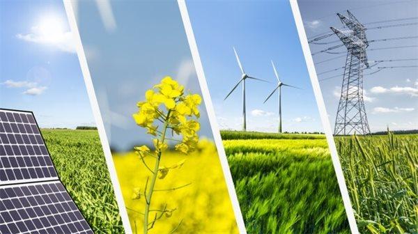 Lo ngại 'bong bóng xanh' khi tiền ồ ạt chảy vào cổ phiếu năng lượng tái tạo
