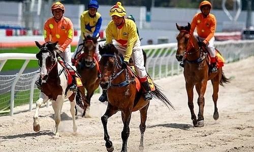 Trường đua ngựa tại Sóc Sơn dự kiến hoạt động từ 2020