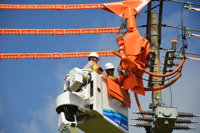 Việt Nam tăng mua điện từ Lào