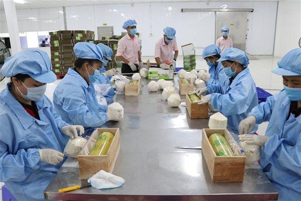 Việt Nam vẫn nhập siêu từ các thị trường có FTA